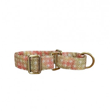 Shades Of Champagne Gold And Pink Fireworks Martingale Collar