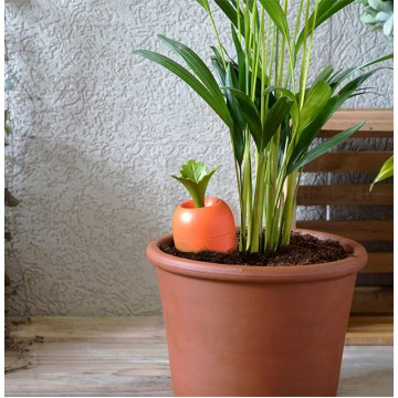 Care-It Self Watering Device