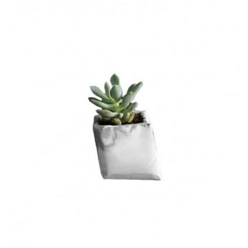 Giraffe Pot (Small)
