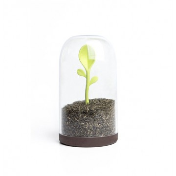 Sprout Jar Container & Spoon