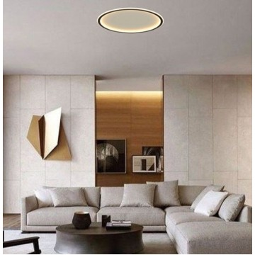 Halo Ceiling Lamp